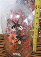 333 - BUTTERFLYS IN GLASS DISPLAY CASE