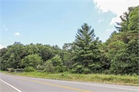 Wooded Lot for Sale Next to Golf Course in Floyd VA