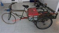 Custom Electric Bike