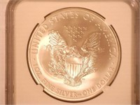 2013 American Eagle, Silver 1 Dollar