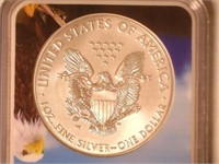 2018 American Eagle, Silver 1 Dollar Burnished
