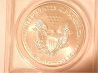 2017 American Eagle, Silver 1 Dollar Burnished