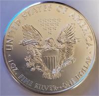 2011 - SILVER AMERICAN EAGLE (55)