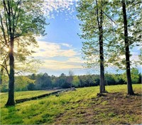 The Smith Real Estate Auction of Knoxville TN 30 Acres