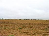 SE/4 of 25-29N-9 W.I.M. Less 10 acres in Alfalfa