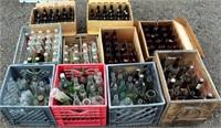 Beer & Pop Bottles (view 2)