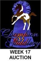 CHAMPION WEEK 17