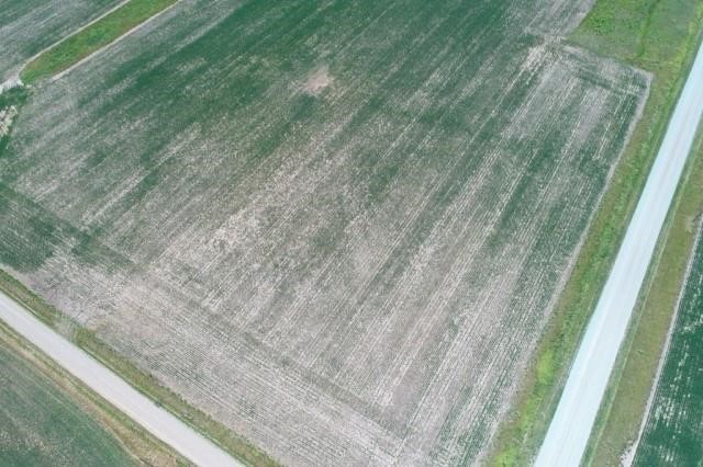 ONLINE ONLY 50+ FARMLAND ACRE AUCTION