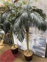793 - 2 TALL NEVERDIE PALM TREES