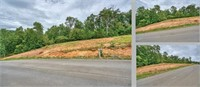 Lot 48 Homestead Dr Unicoi, TN