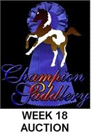 CHAMPION WEEK 18