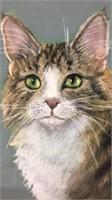 Matted Pastel Cat Art 18x14
