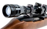 Gun Ruger 10/22 Semi Auto Rifle in 22 LR