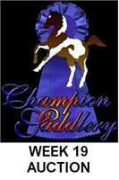 CHAMPION SADDLERY'S ONLINE SADDLE AND TACK AUCTION #19