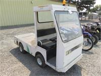 Taylor-Dunn Electric Cart