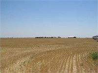 296 +/- Irrigated Cropland Acres