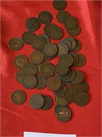 (49) Indian Head pennies