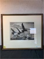 Seagull Artwork