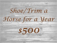 Rising Stars Therapeutic  Riding Center Benefit Auction
