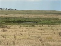Sharkey Ranch Absolute Land Auction