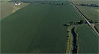 FARM GROUND AUCTION (143.44 Acres M/L); Illinois
