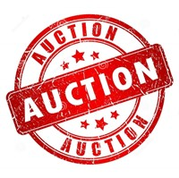 Waupun Fall 2020 Online Consignment Auction