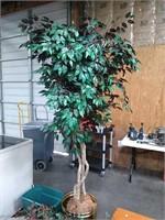 Mohawk Area Rug & Plant Decor. 96 X 132