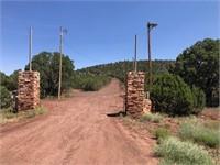 Arizona Land Auction - Picacho & Vernon, AZ