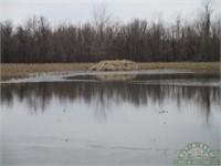 40 acre Hunt Property Alexander CO IL