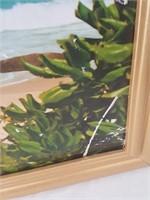 815 - ART: FRAMED COASTAL PALM TREE
