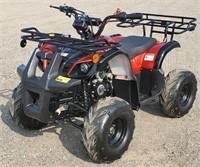 TAO 125 Kids ATV, gas, starts, automatic