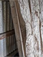 Tree bark slabs for display unit