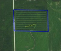 25 Acre + or - Edgar Land Auction