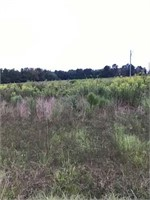 Development Tract Deluxe in Johnston County, NC!