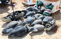 Several Goose Decoys