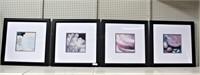Framed, matted prints, 26x26 (4)