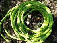 Heavy duty approx. 20' garden hose & sprinkler
