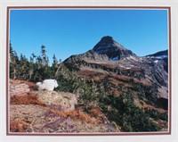 Priest, Bill Bison & Mt. Goat Matte Collection