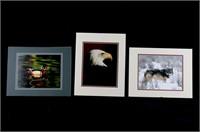 Priest, Bill Eagle, Wolf, & Wood Duck Matte Photos