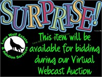 Talty 319, Saturday Night Webcast Auction, October 24, 2020