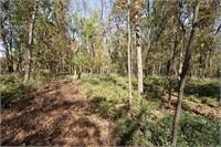 Chariton County Farm Auction