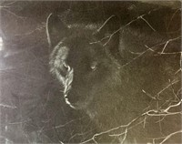 "Robert Bateman Premier Edition ""Midnight Black Wo"