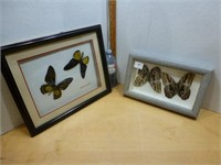 TNT Auctions - October 28th Auction