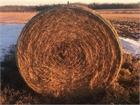 TIMED ONLINE HAY BALE AUCTION
