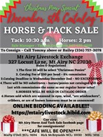 """Christmas Pony"" Special - December 5th Catalog Horse Sale"