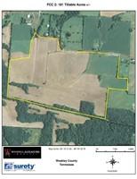 Freeman Cattle Co. - Farm Lease