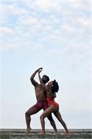 Owen/Cox Dance Group Benefit Auction