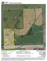 77+/- AC FARMLAND W/OIL PRODUCTION  IN SUMNER COUNTY KS