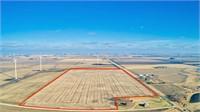 76.8 Acres m/l in Palo Alto County, Iowa
