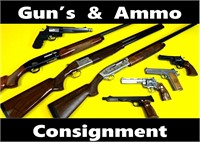 Glocks to Garands Firearms & Ammo Auction  #55